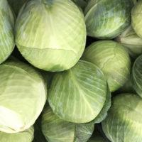 Капуста Циклон - купить семена капусты Циклон