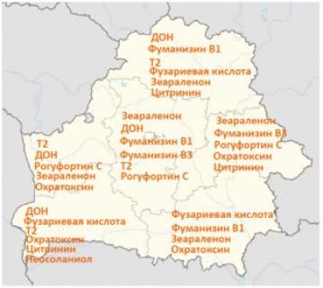 Карта микотоксинов Беларуси