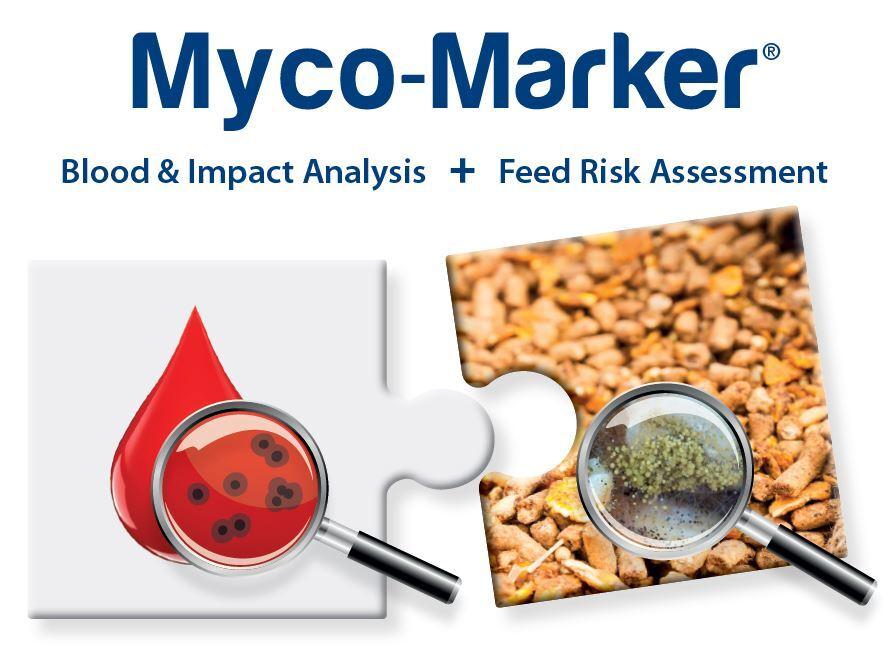 Myco-Marker-web-article.jpg