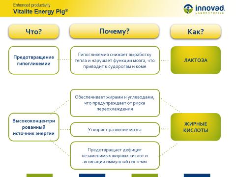 Vitalite Energy Pig